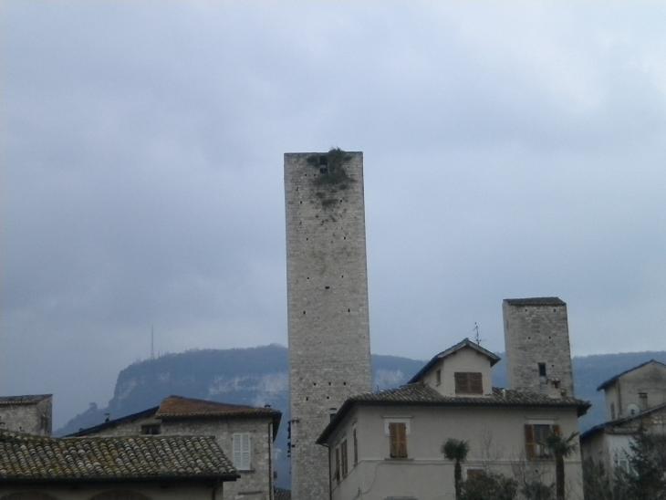 Torre degli Ercolani - Incuria