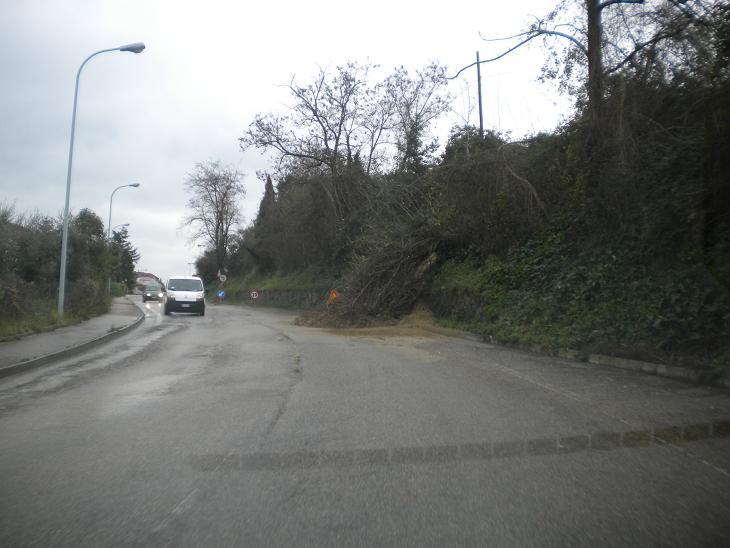 Una frana in una strada picena