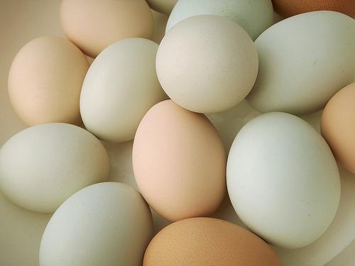 Cresce il consumo di uova: sostituiscono la carne, e costano meno