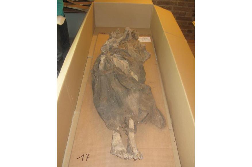 Una delle mummie trasportate a Bolzano