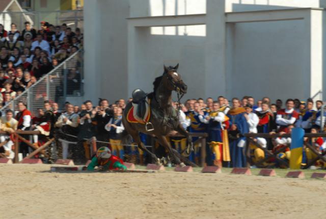 Quintana agosto 2011 (foto Troiani): il cavaliere di Sant'Emidio disarcionato