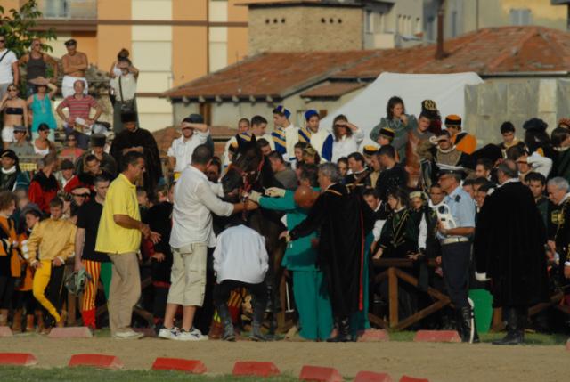 Quintana agosto 2011 (foto Troiani): cavallo di Porta Tufilla accudito e poi caricato sul mezzo adibito all'assistena per cavalli