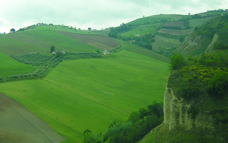 Panorama piceno (Tenuta De Angelis)