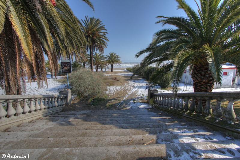 Chalet. 12 febbraio 2012, la neve vista da Antonio I.