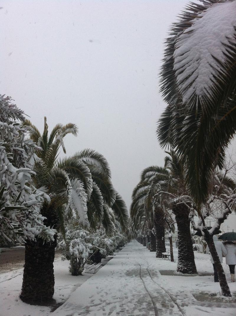 Lungomare San Benedetto del Tronto, 10 febbraio 2012, Silvia Basili (3)
