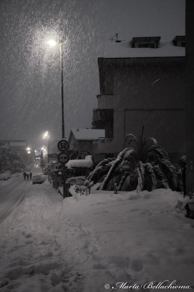Neve, 10 febbraio 2012, foto di Marta Bellachioma (2)
