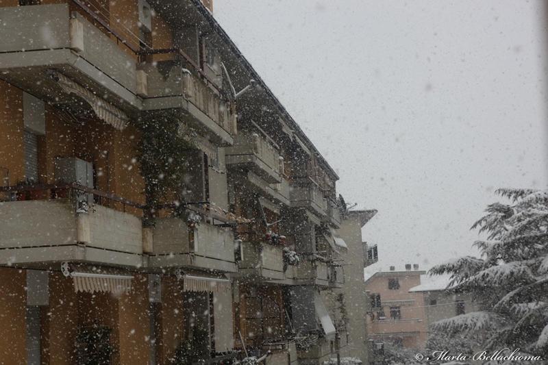 Neve, 10 febbraio 2012, foto di Marta Bellachioma