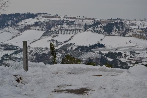 Neve, 11 febbraio 2012 foto Alfredo Cordisco 1