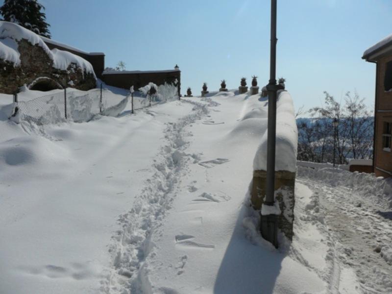 Neve 11 febbraio a Massignano di Pietro Curi 13