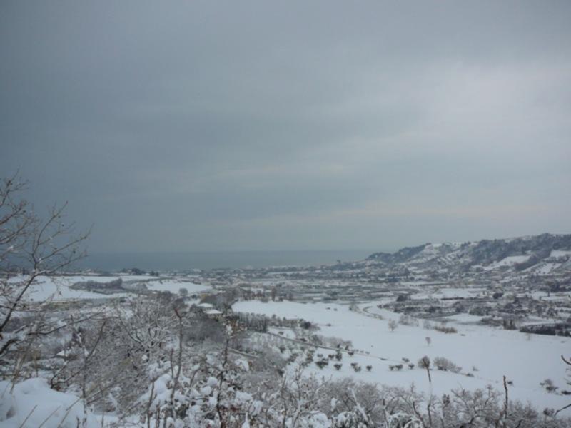 Neve 11 febbraio a Massignano di Pietro Curi 3