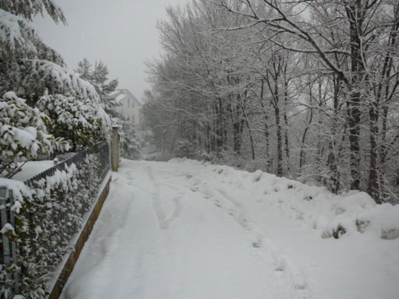 Neve 11 febbraio a Massignano di Pietro Curi 9