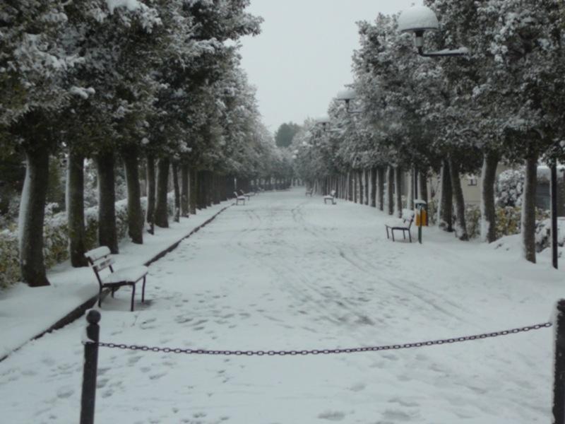 Neve 11 febbraio a Massignano di Pietro Curi
