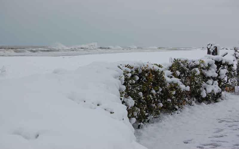 Neve, 12 febbraio 2012 foto Marcello Centini