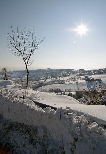 Neve, Acquaviva 12 febbraio 2012 foto Marco Rosetti 5