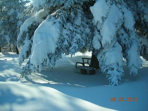 Neve, Montemonaco, 9 febbraio 2012, foto Annamaria 1