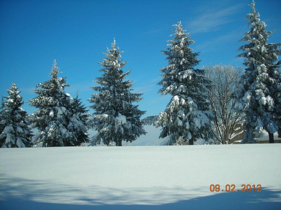 Neve, Montemonaco, 9 febbraio 2012 foto Annamaria 3