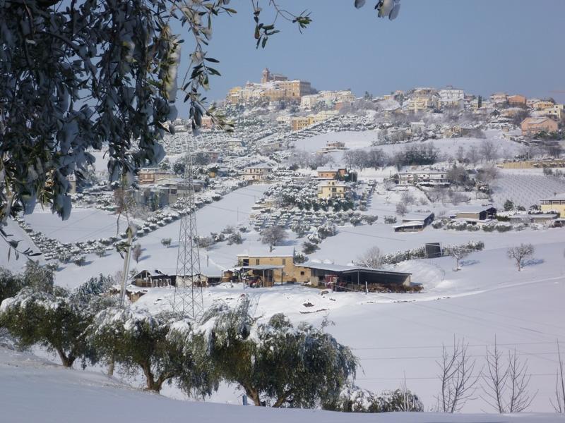 Neve Monteprandone, 11 febbraio 2012, Graziano Traini (2)