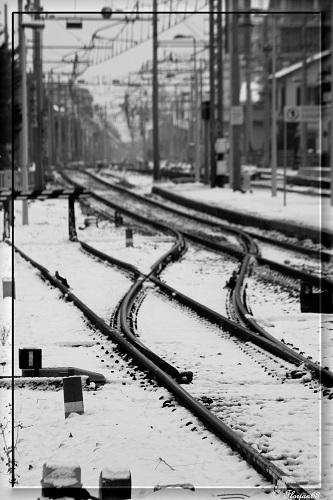 Neve, San Benedetto, 12 febbraio 2012 foto Floriano Apolloni 4