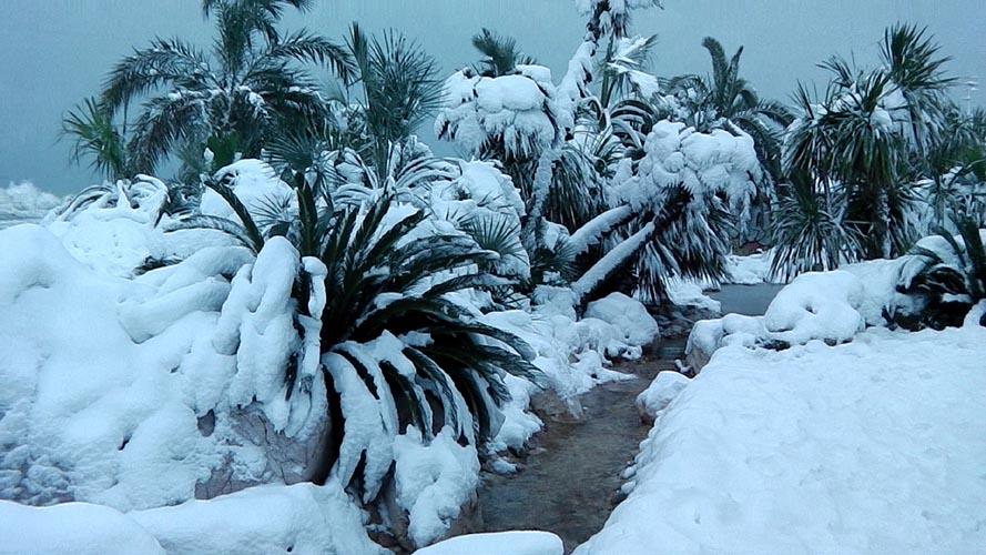 Neve San Benedetto 2012, Giacinto Romandini 13