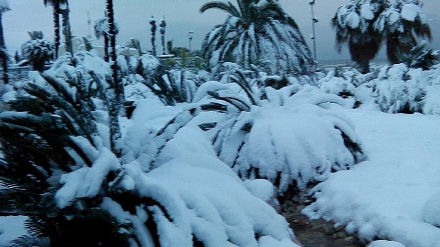 Neve San Benedetto 2012, Giacinto Romandini 14