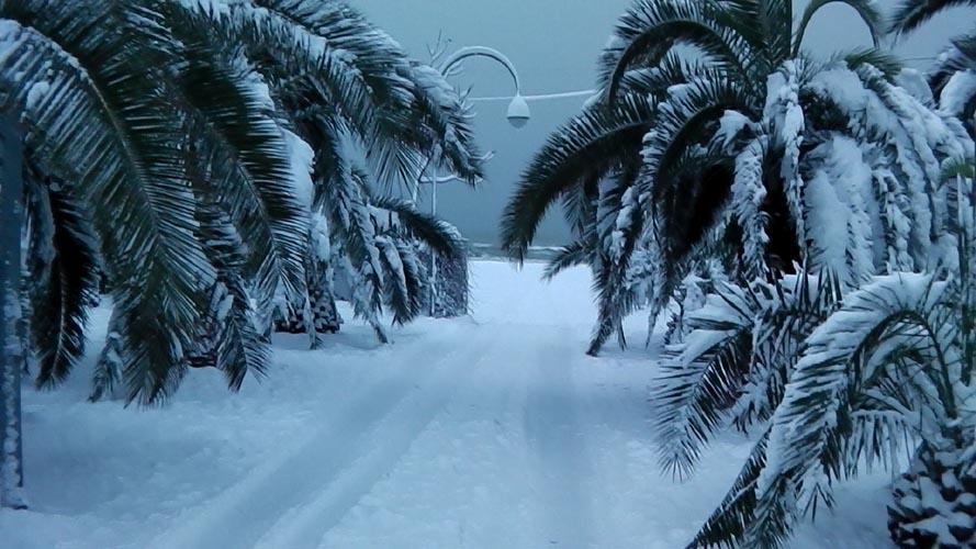 Neve San Benedetto 2012, Giacinto Romandini 2