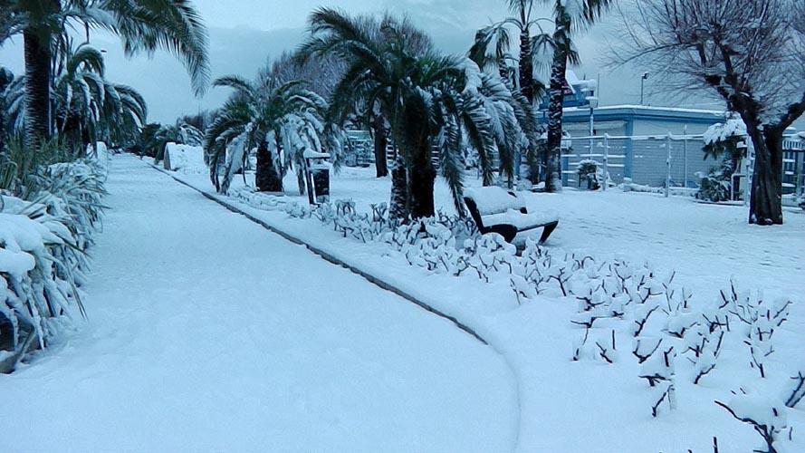 Neve San Benedetto 2012, Giacinto Romandini 27