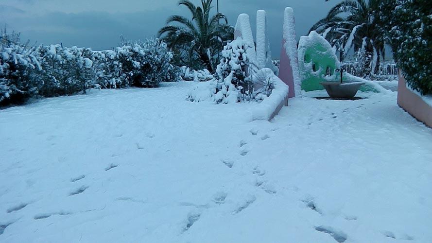 Neve San Benedetto 2012, Giacinto Romandini 28