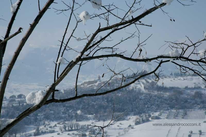 Neve, Spinetoli, 12 febbraio 2012 foto Alessandro Cocconi 3