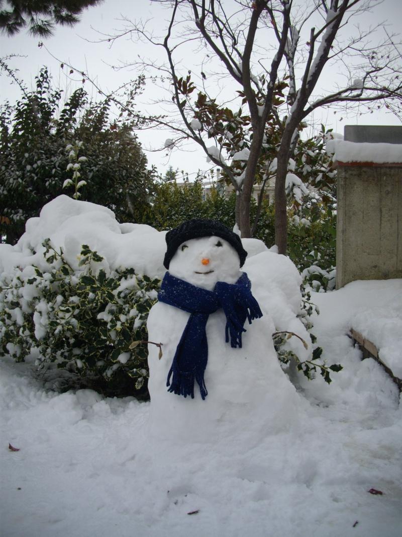 Neve a Centobuchi, 10 febbraio 2012, Irene Bergamante (3)
