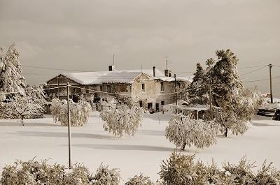 Neve a Cupra Marittima, 11 febbraio 2012 foto Stefano Brutti 1