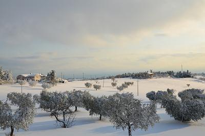 Neve a Cupra Marittima, 11 febbraio 2012 foto Stefano Brutti 2