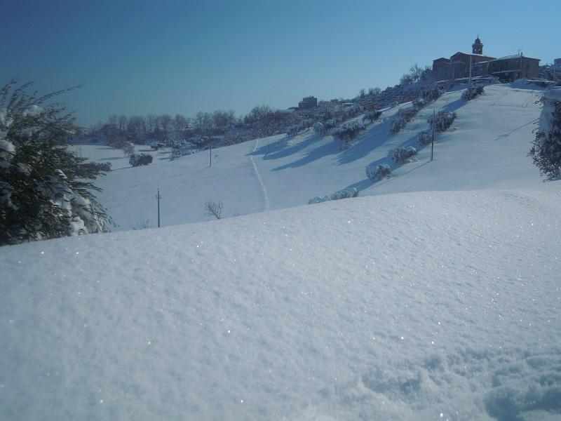 Neve a Monsampolo 11 febbraio (papanerese) 3