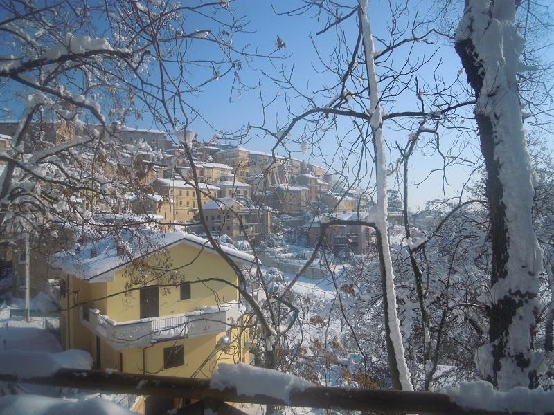 Neve a Monsampolo 11 febbraio (papanerese)