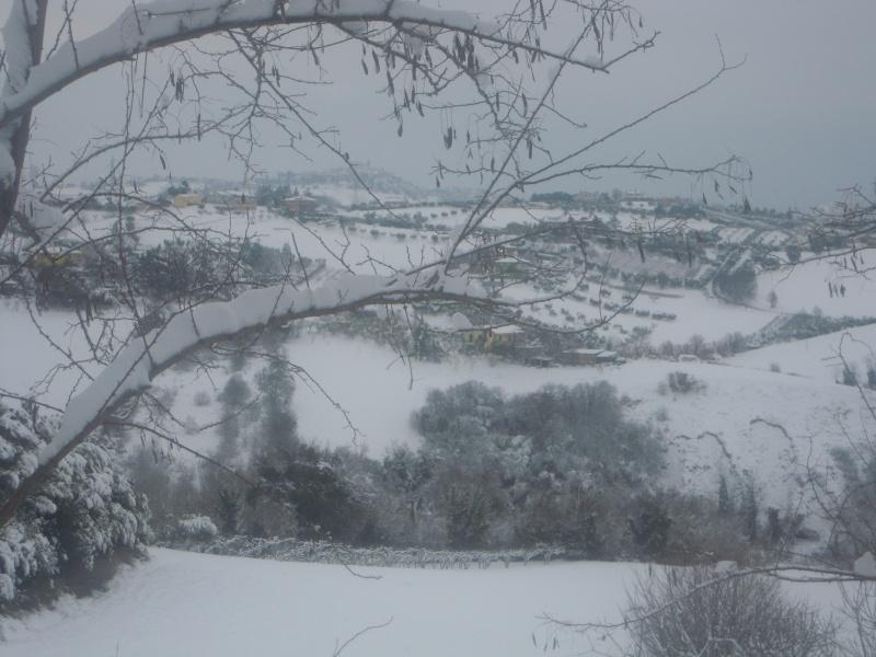 Neve a Monsampolo, panorama, 10 febbraio 2012, Paola Panarese