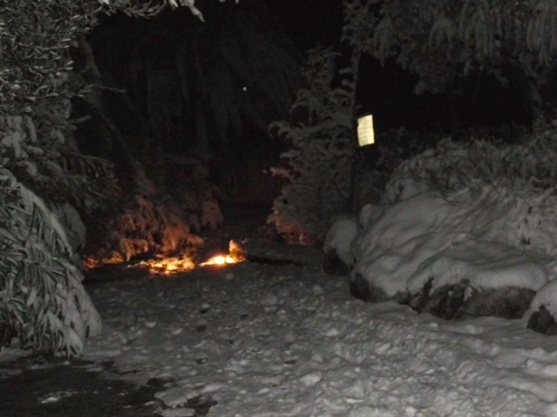 Neve a San Benedetto, 10 febbraio 2012, foto di Danilo (4)