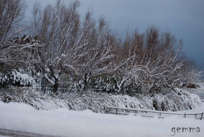 Le neve di questi giorni