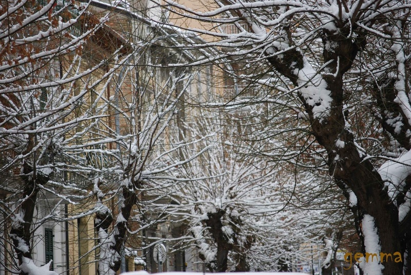 Neve a San Benedetto, 11 febbraio 2012, Gemma Spinozzi (2)