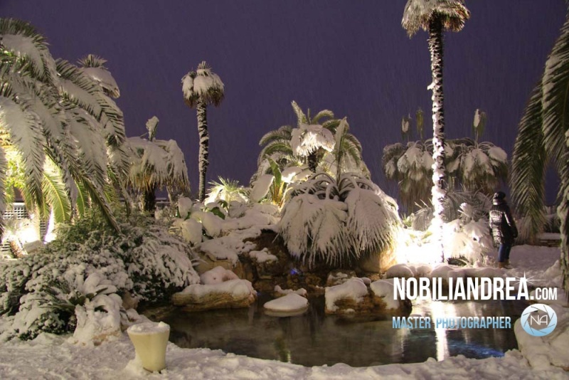 Neve a San Benedetto del Tronto, 9 febbraio 2012, foto di Andrea Nobili2