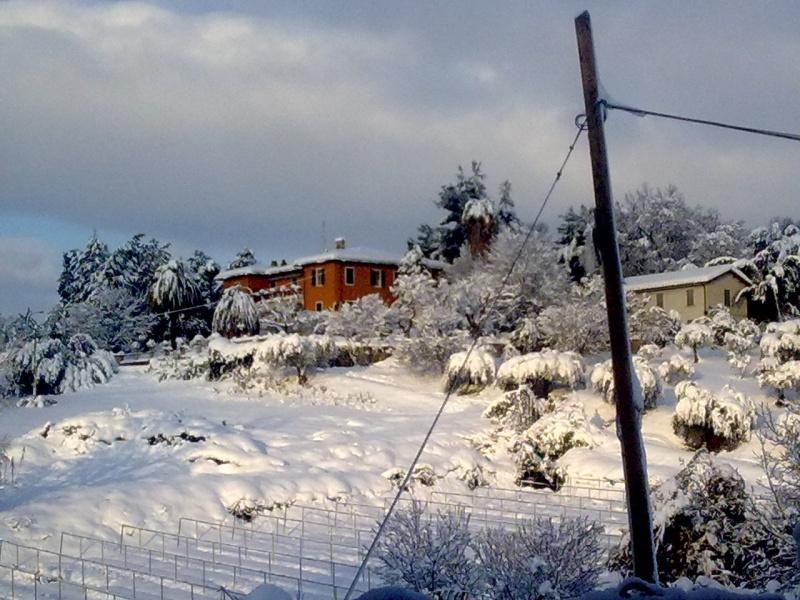 Neve a Spinetoli, 11 febbraio 2012, foto di Selene