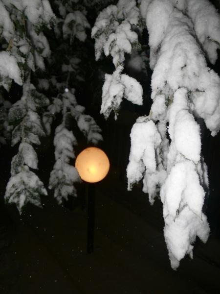 Neve ad Acquaviva Picena, 10 febbraio 2012, Lorenzo Oddi (5)