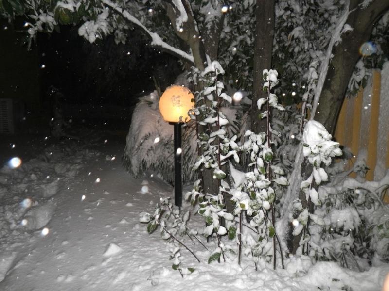 Neve ad Acquaviva Picena, 10 febbraio 2012, Lorenzo Oddi (6)