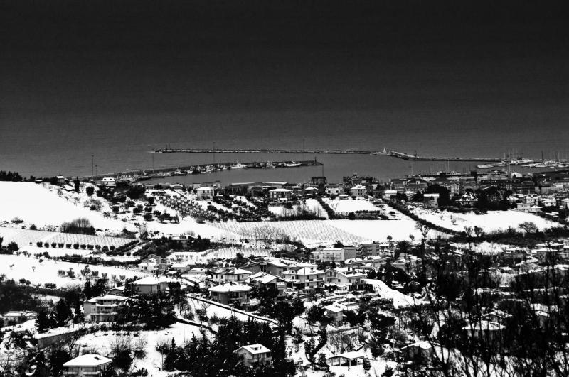 Neve ad Acquaviva Picena, 11 febbraio 2012, Andrea Tomassini (3)