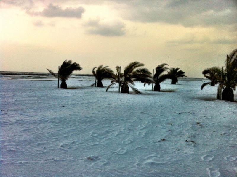 Neve sul lungomare di San Benedetto, Silvia Basili, 7 febbraio