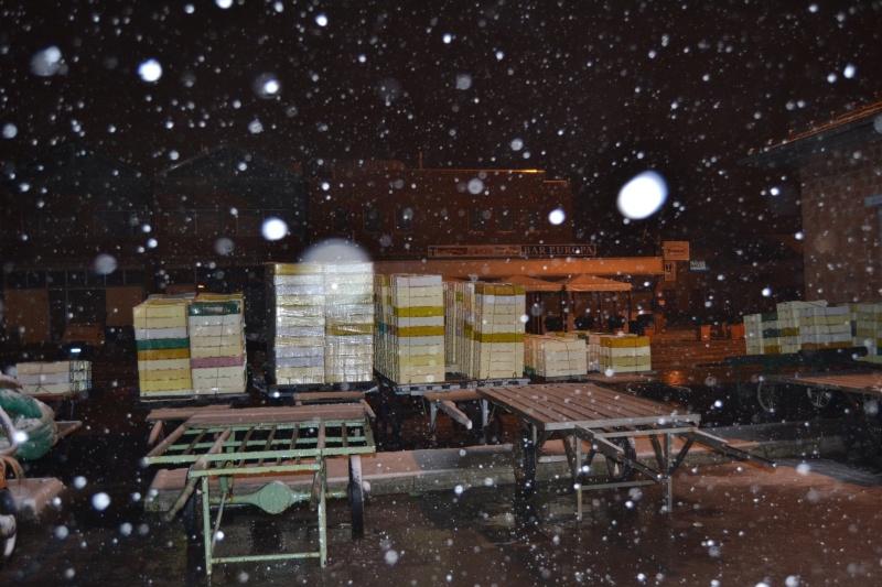 Porto di San Benedetto del Tronto, 10 febbraio 2012 (3)