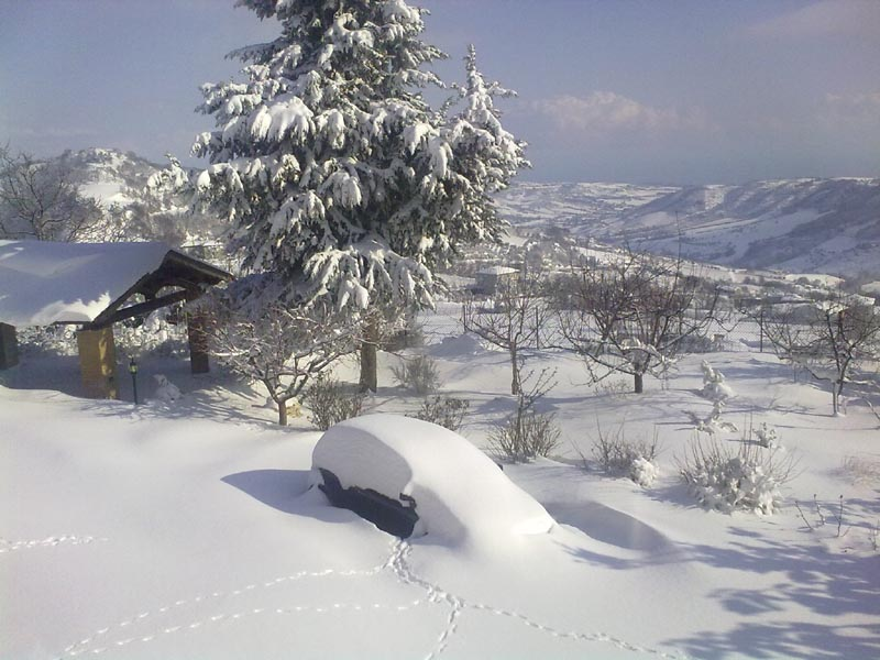 Ripatransone, mattina dell'11 febbraio, neve (Annalisa Agostini) 1