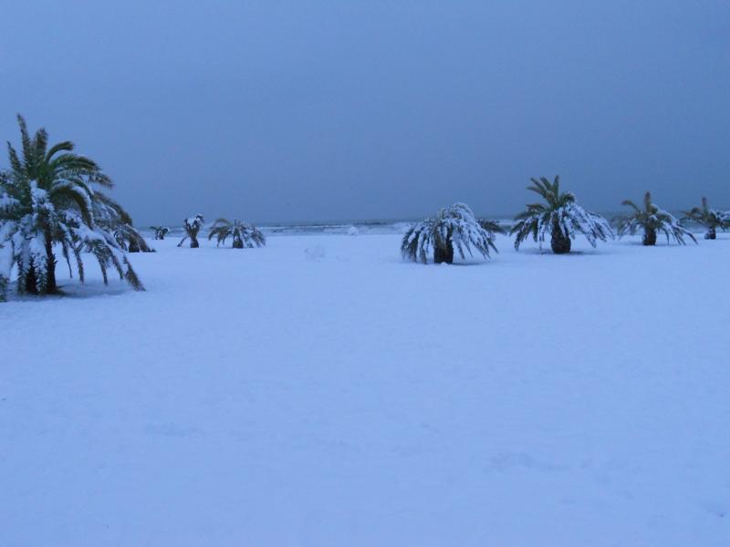Spiaggia innevata, 9 febbraio 2012, Ilio Ciccarelli