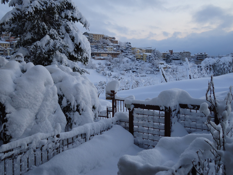 Corrado Cocconi, Monsampolo e la neve. 12 febbraio 2012