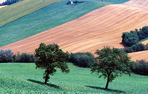 Panorama piceno (www.planetware.com)