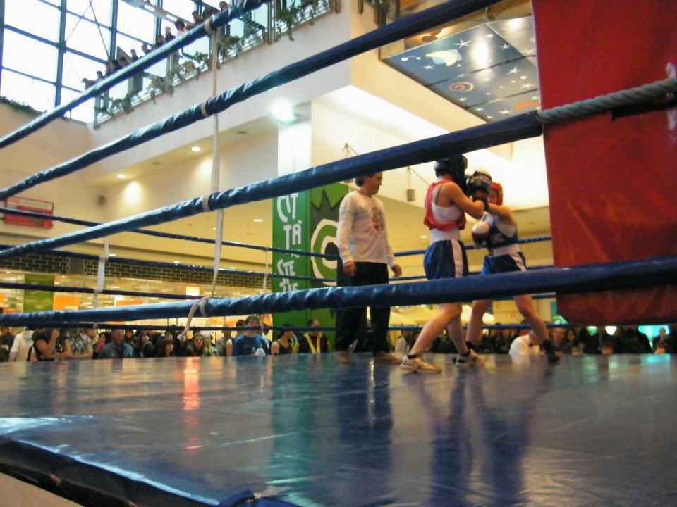 Boxe femminile al Città delle stelle
