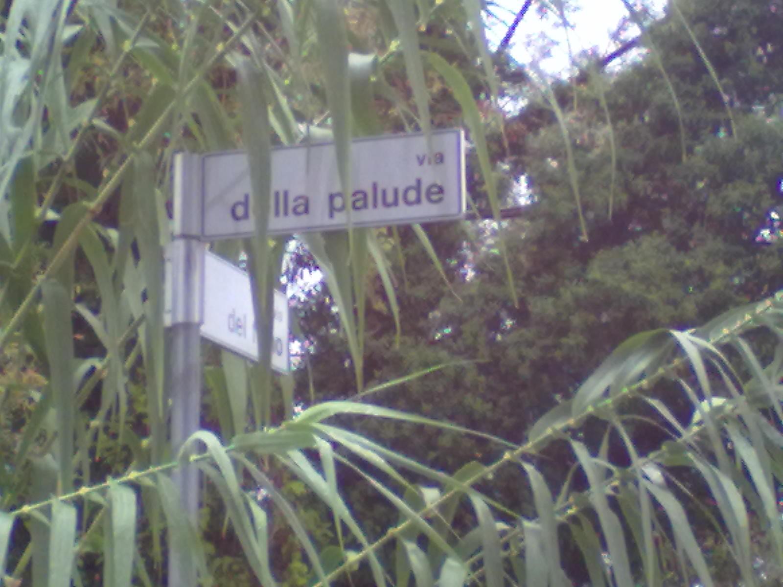 Via della Palude (foto del 14 settembre 2012)